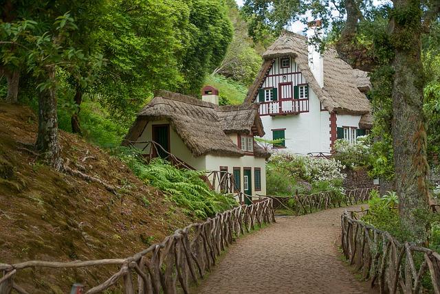 Dom z piwnicą