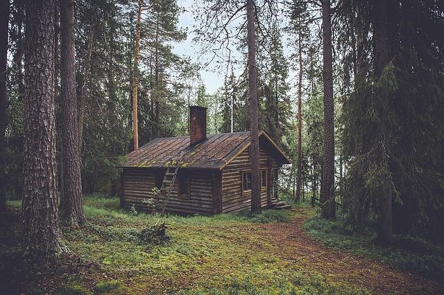 Z czego budować dom